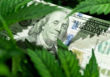 """Canopy Growth: La verdadera identidad de la multimillonaria compañía """"líder"""" de la industria del cannabis medicinal"""
