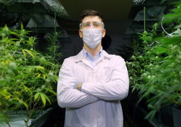 Canopy Growth logra hacerse con la primera licencia de importación para cannabis medicinal en el Reino Unido