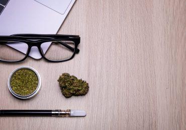 Etiqueta social para usuarios de cannabis: una guía rápida para convivir con la reciente ola de la legalización de la marihuana