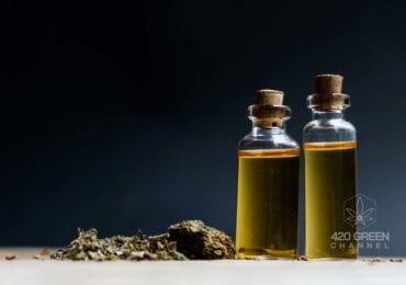 Aceite de cannabis vs. aceite de cáñamo: ¿sabes realmente cuáles son las diferencias entre ambos?