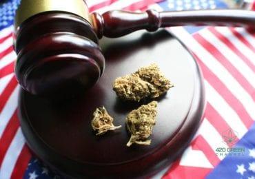 Legalización del cannabis no produce aumento de la delincuencia, según gobierno federal de E.E. U.U.