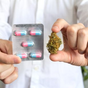 Coronavirus: ¿Es el cannabis la cura para el covid-19?
